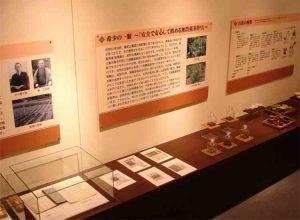 茶フェミュージアム