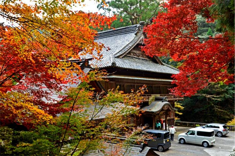 紅葉の仙龍寺
